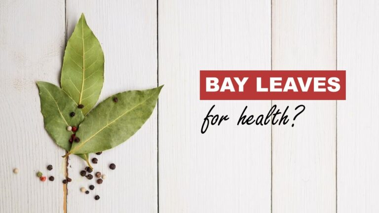 Bay Leaf Health Benefits Why you Should Include Bay leaves to Your Diet!